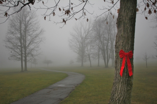 Red bow on golf course tree in fog
