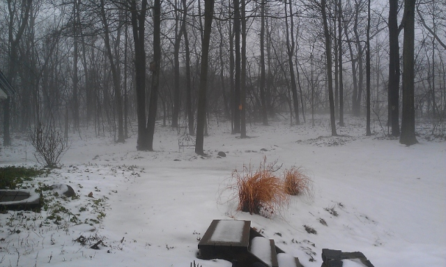 Fog to the left from front door (800x479)
