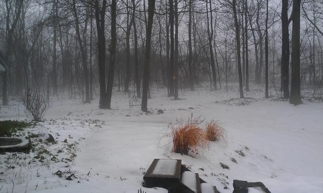 Fog to the left from front door (800x479)