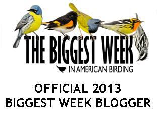Biggest Week Official Blogger logo