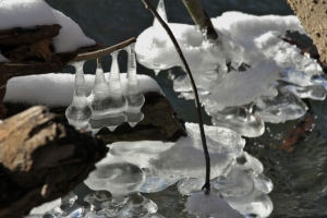 Ice formations on Clinton River at Holland Ponds (9) (640x427)