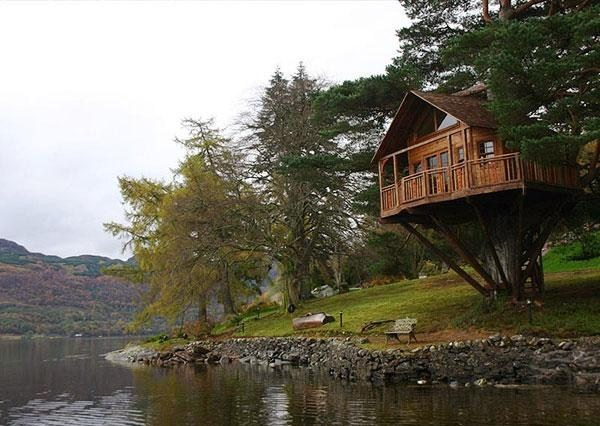 Tree house on lake - copyright unknown