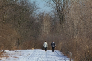 Walking in the Michigan winter woods