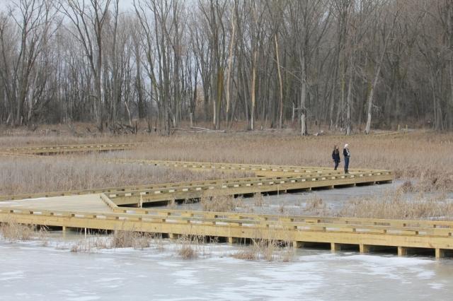 The new marsh boardwalk -- isn't it great?