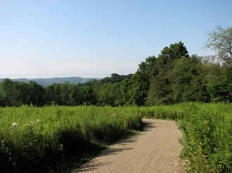 Walking trail at Foxfield Preserve.