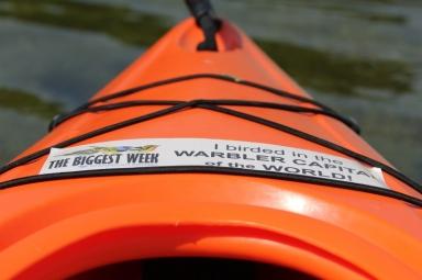 Even my kayak has a birding bumper sticker!