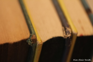 Books - heritage theme for Macro Mondays (2) with sig
