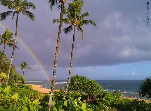 This double rainbow greeted us early this morning at Ha'ena Beach.