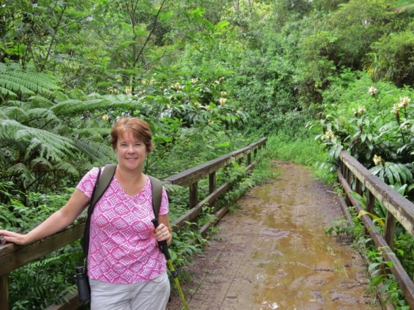 On the Kuilau Trail between downpours