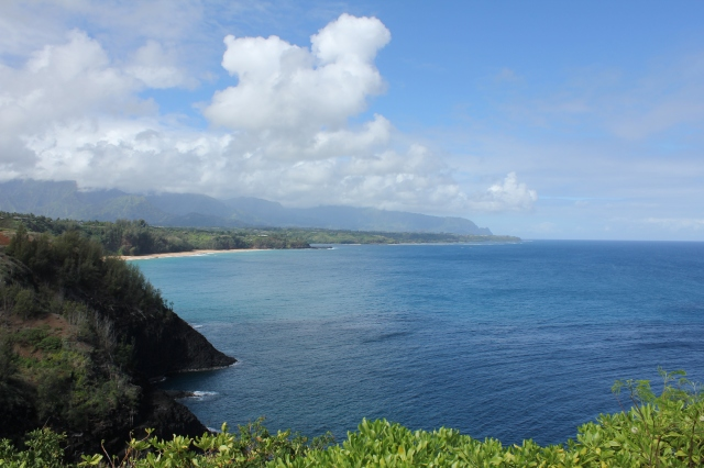 Northeast coast of Kaua'i, seen from Kilauea Point NWR