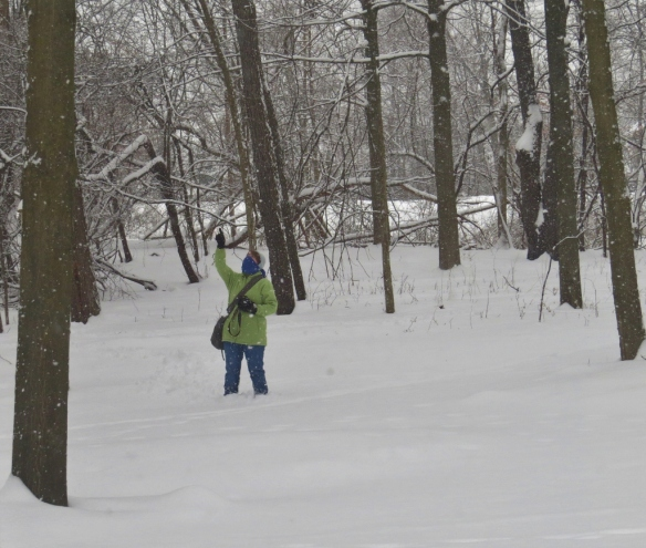 That's me exploring the fresh snow this morning. Pointing at--what else?--a bird.