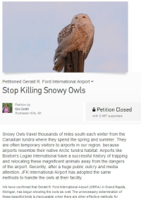 Snowy Owl petition screenshot for blog