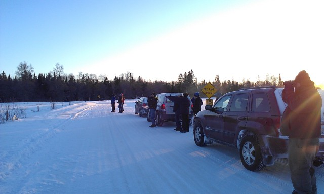 Searching for the Great Gray Owl near sunrise on Saturday. No luck.