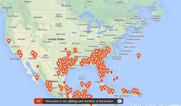 eBird map showing locations of Black-and-White Warblers as of March 19, 2014