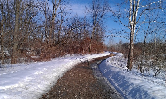 Path at Holland Ponds