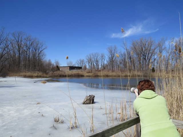 Those ducks are too far away for a good shot!
