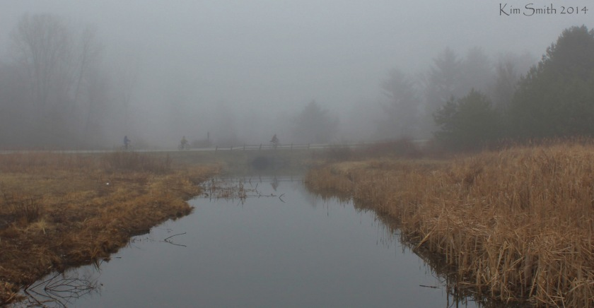 Bikers in the fog