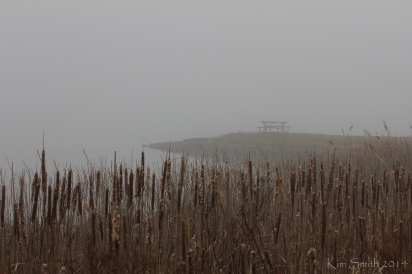 Believe it or not, there's a 500-acre lake out there somewhere.