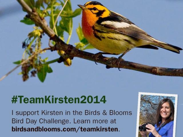 Kirsten-BirdDayChallenge
