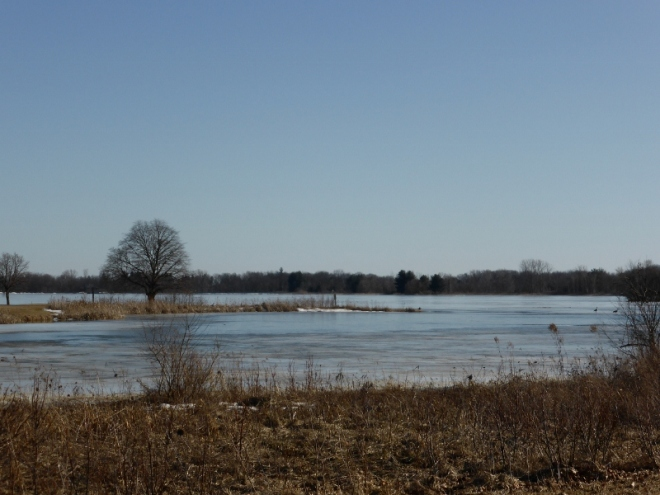 Stony Creek lake, still about 75% ice-covered.
