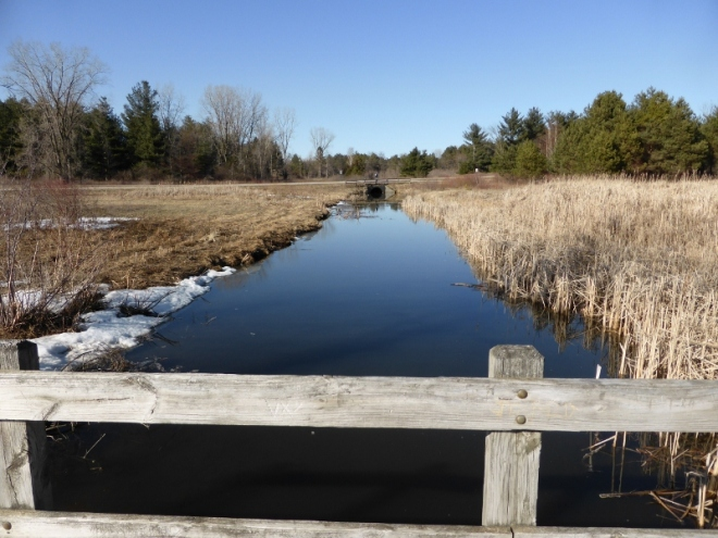 Landscapes at Stony Creek in early spring (6) (800x600)