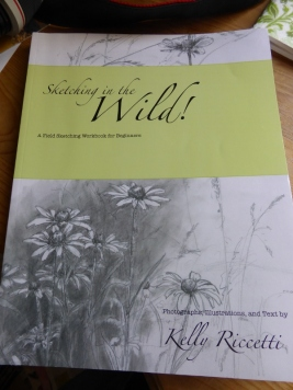 Sketching in the Wild by Kelly Riccetti (600x800)