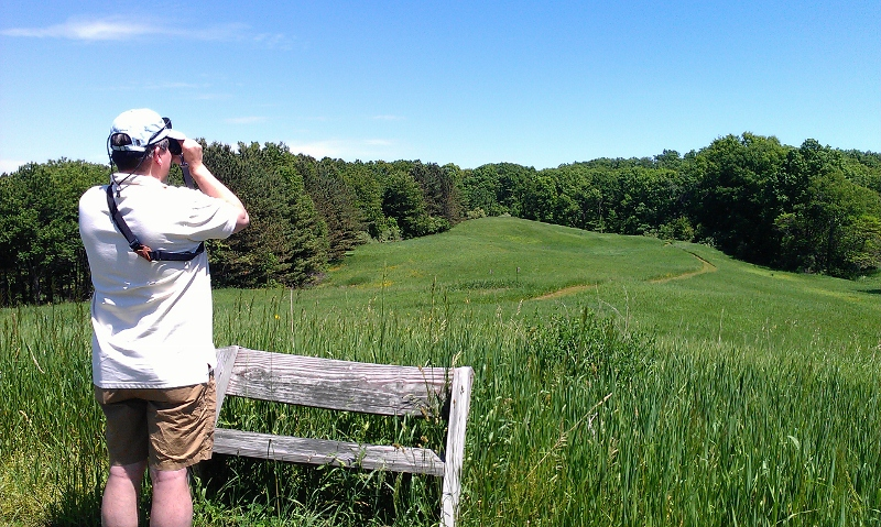 Eric looking over the meadow at Otis Farm