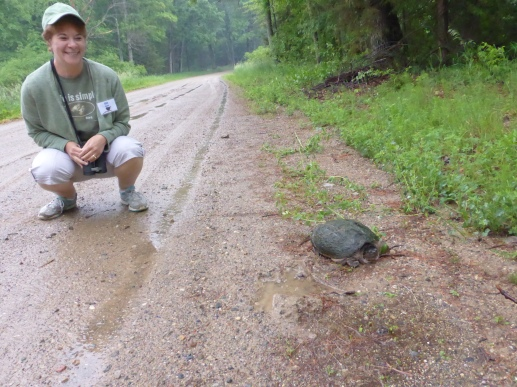 Me with one of many snapping turtles we found on roads around the county