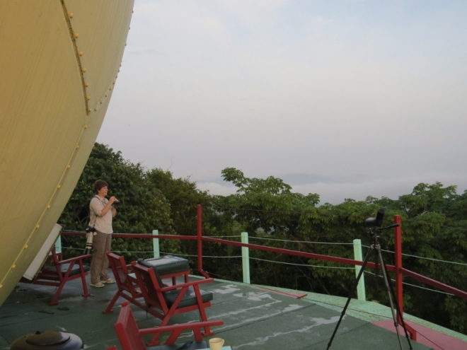My first morning on the observation deck atop the Canopy Tower