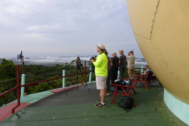 Birders on the observation deck of the Tower