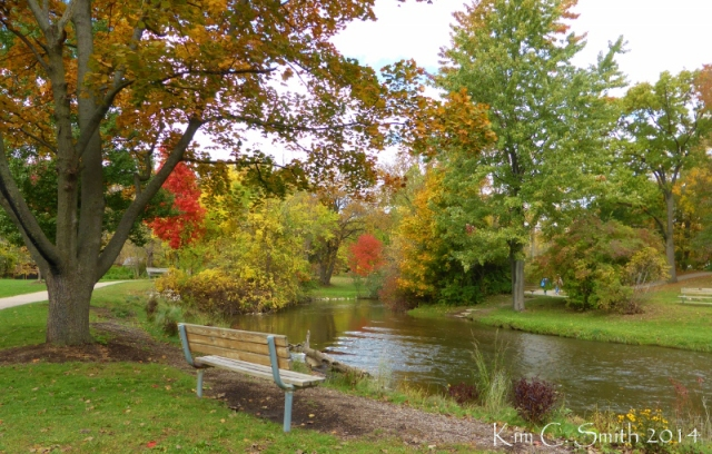 Rochester Municipal Park bench and creek w sig