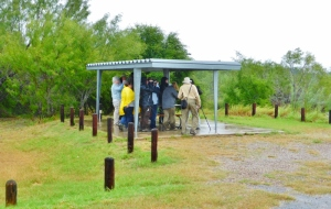 Birders in the rain at Falcon State Park