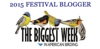 2015 Biggest Week Festival Blogger badge