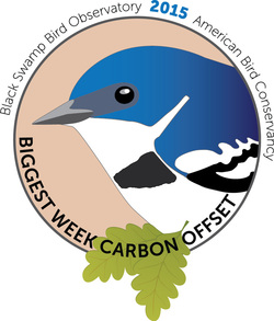 Biggest Week Carbon Offset logo