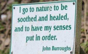 John Burroughs sign at Magee Marsh (2)