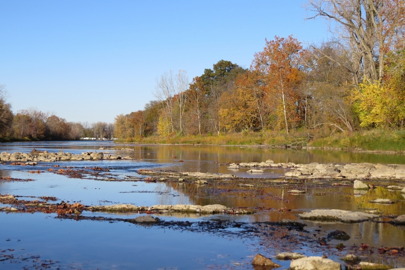 A shallower section of the Sandusky River