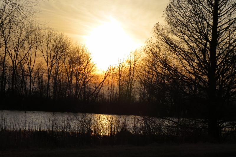 Sunset at Magee Marsh Feb 23 2016 v2 (800x533)