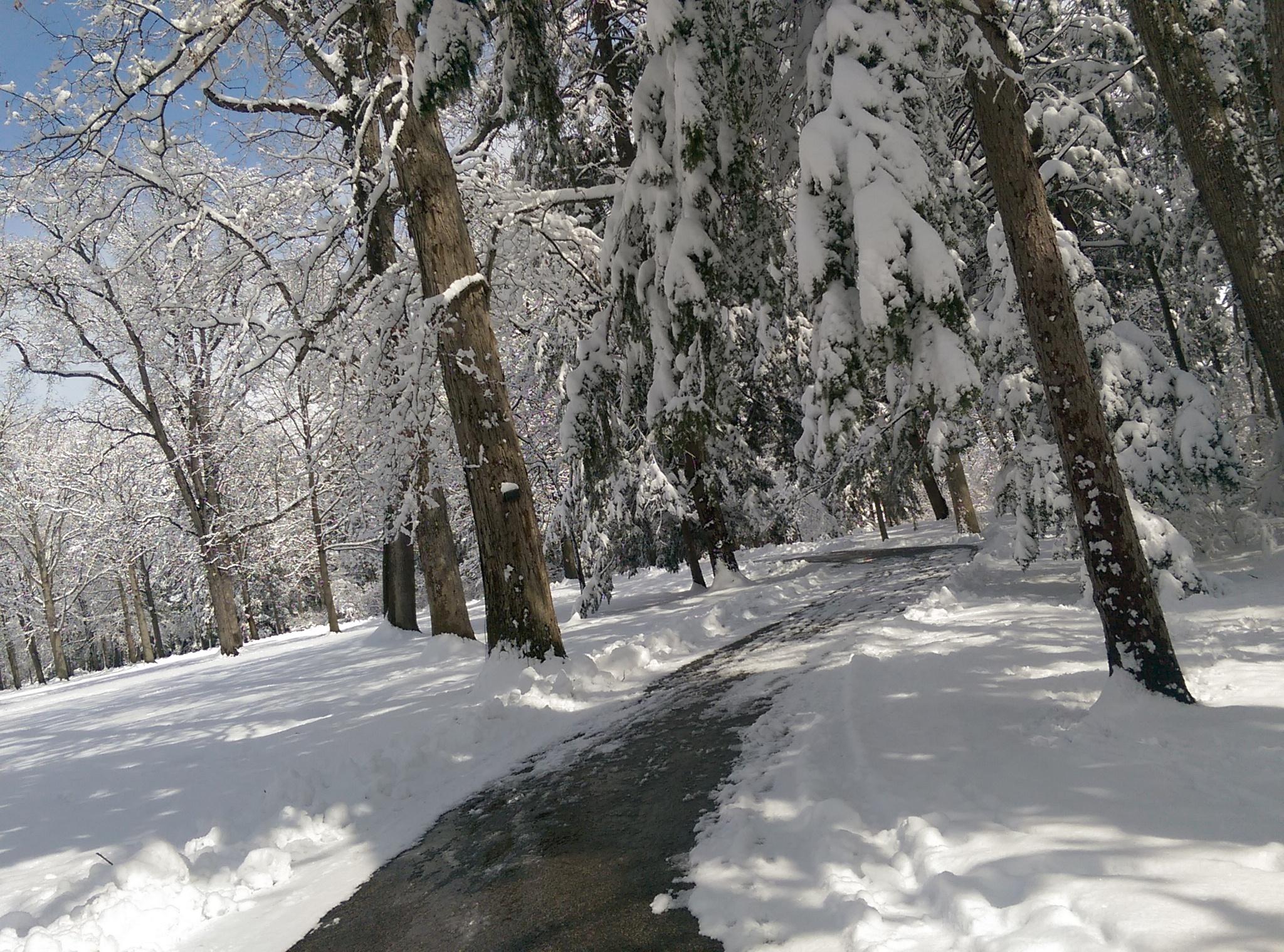 Hayes Memorial - April snow v1.jpg