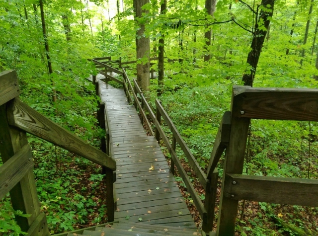 Boardwalk at Collier State Nature Preserve