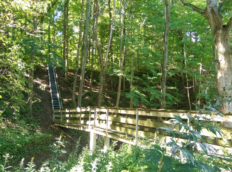 bridge-and-stairs-at-steyer-nature-preserve-800x594