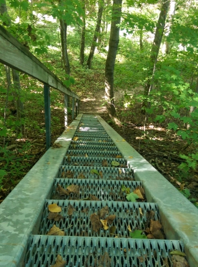 staircase-in-woods-looking-down-594x800