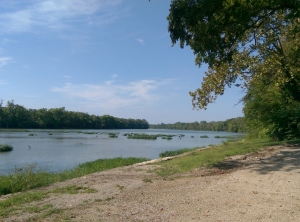 The Maumee River at Farnsworth Metropark