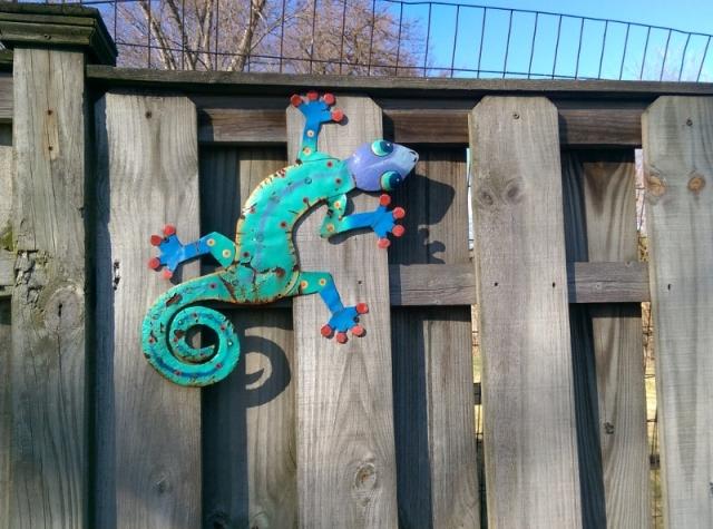 Blog - garden art lizard at new house (800x594)