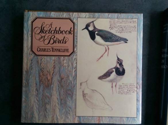 Blog - A Sketchbook of Birds (800x594)