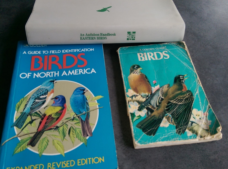 Blog - more bird books from NeverMore (800x594)