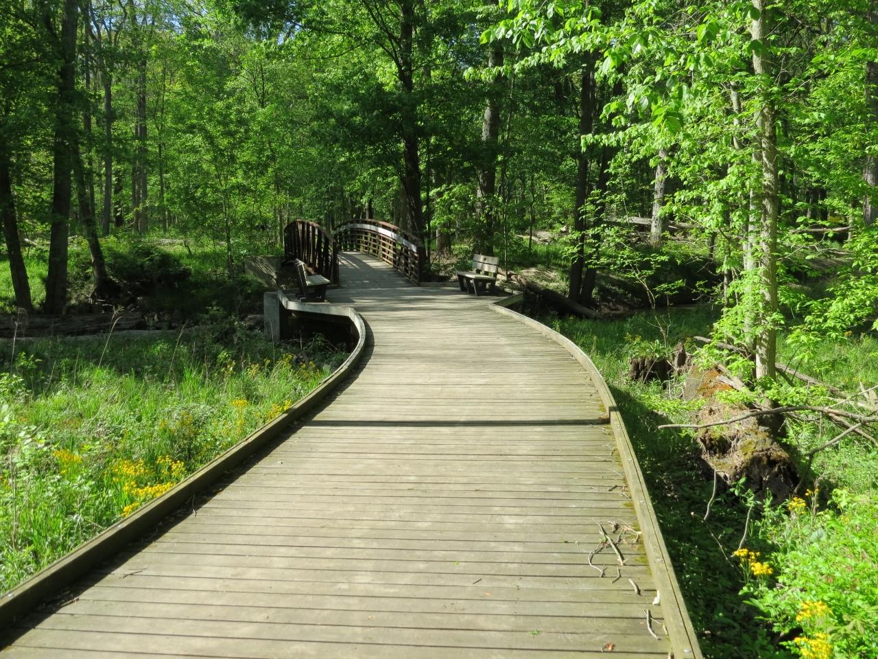Boardwalk and bridge at Oak Openings (1280x960)