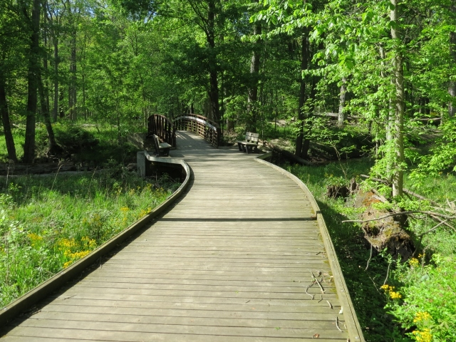 Boardwalk and bridge at Oak Openings (1280x960)