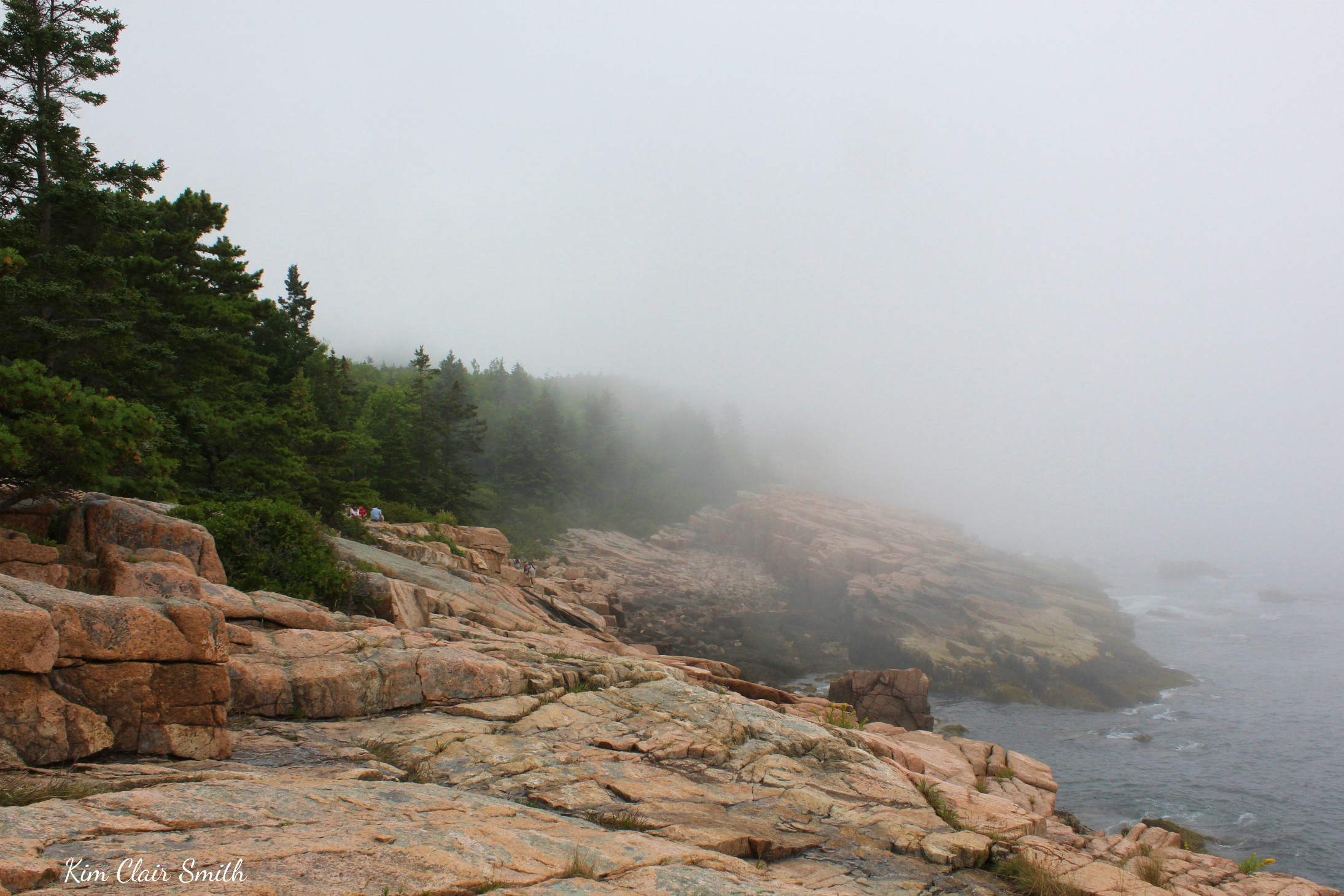 Fog rolling in at Otter Point w sig resized