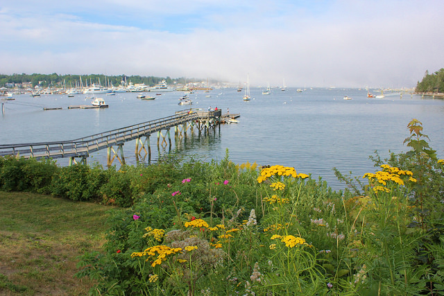 Typical scene along Maine coast - boats pier flowers