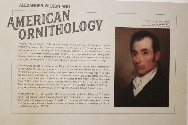 Before Audubon - Alexander Wilson exhibit at TMA - about Wilson